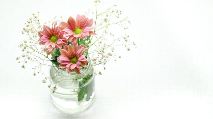 切り花を長持ちさせる3つの簡単な方法!【ためしてガッテンの裏技アリ】