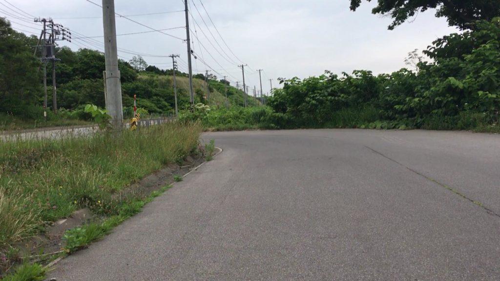 泊マウンテンゴリラ岩への道①