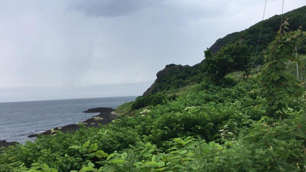 「マウンテンゴリラ岩」っぽい岩